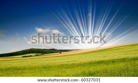 Serene summer meadow and wonderful blue sky. - stock photo