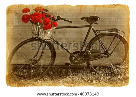 Series of illustrations-postcards on the old paper. Bicycle decorated by red geraniums