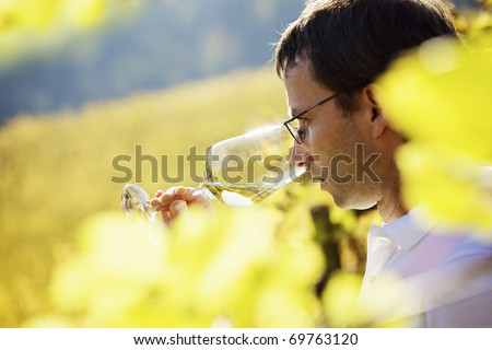 Serious male winemaker holding a glass to taste wine in vineyard with blurred vine leaves in foreground. - stock photo