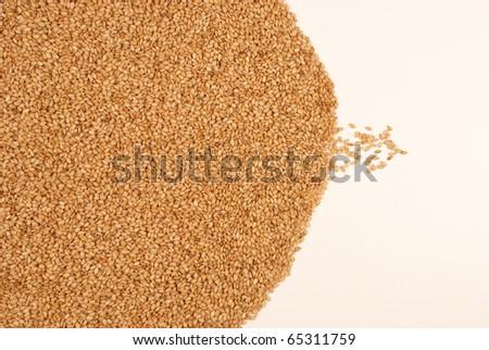 Sesame - stock photo