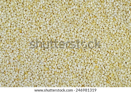 Sesame seeds Background Closeup - stock photo