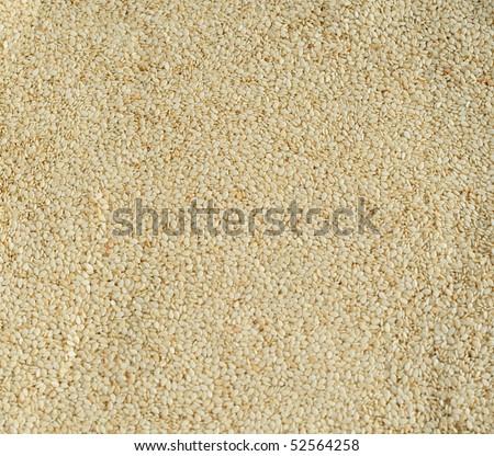 Sesame seeds, closeup - stock photo