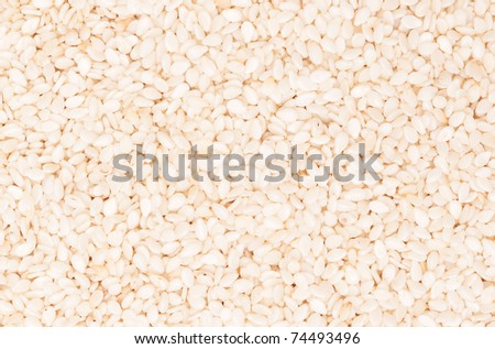 Sesame seeds food background, for textures or backgrounds