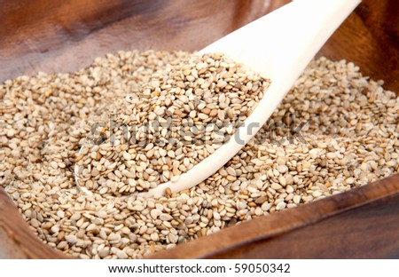 sesame seeds in a bowl with spoon - stock photo