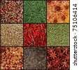 set background images of various milled spices - stock photo