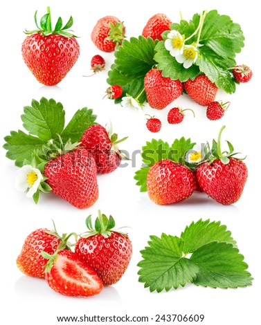 Set berry strawberry with leaves and flowers. Isolated on white background - stock photo