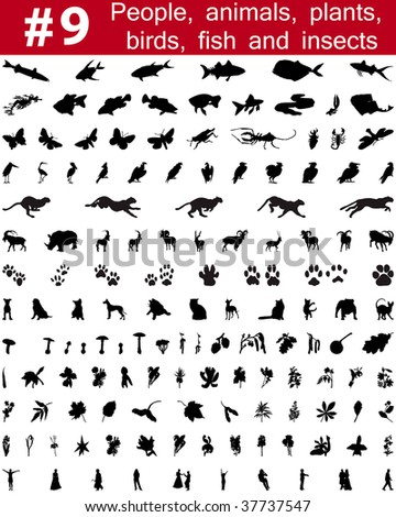 Set # 9. Big collection of collage silhouettes of people, animals, birds, fish, flowers and insects