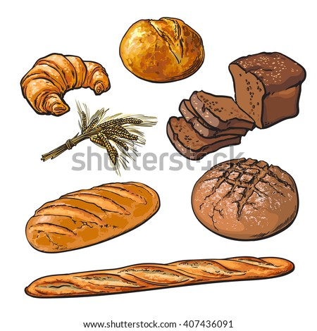Set bread products, pastries on a white background, sliced loaf, French baguette, rye bread, wheat branch, cutting cakes, croissants, colored sketch style hand-drawn, bakery products, rooty - stock photo