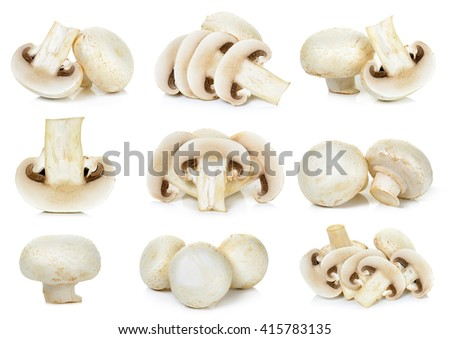 Set Champignon mushroom isolated on white background. - stock photo