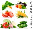 set fresh vegetables with green leaves isolated on white background - stock photo