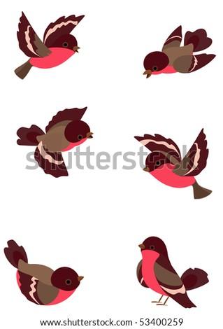 Set funny robin birds, vector illustration, object isolated - stock photo