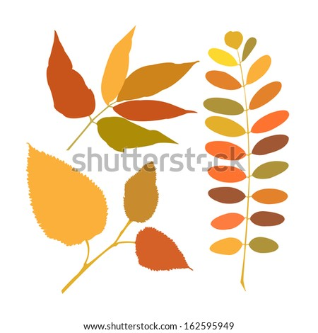 Set of a different branches of autumn - stock photo