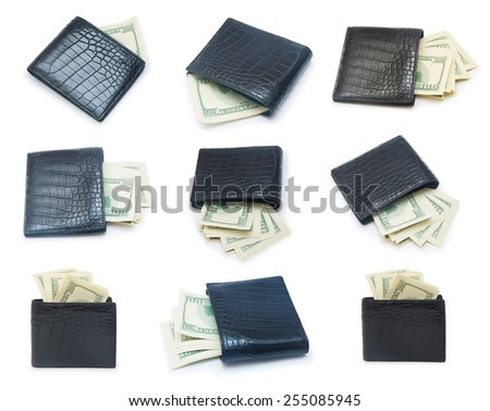 Set of a stack of dollars with leather purse isolated on a white background - stock photo