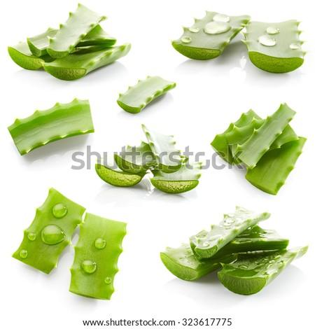 Set of aloe vera isolated on white background - stock photo