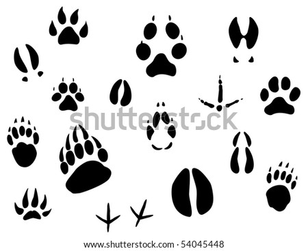Set of animal footprints for ecology design or logo template. Jpeg version also available in gallery - stock photo