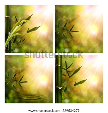 Set of assorted oriental seasonal backgrounds for your design - stock photo
