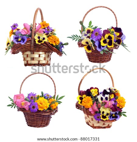 set of baskets with various flowers on white background - stock photo