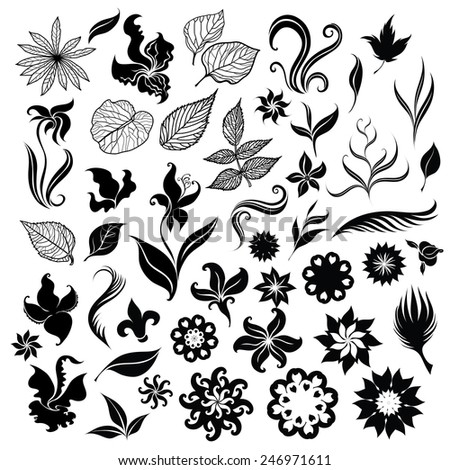 Set of black f - sketches of flowers - stock photo