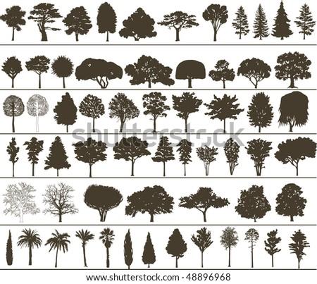 Set of black silhouettes of trees - stock photo