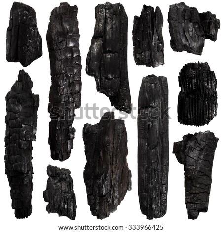 Set of Burnt bark tree isolated on white background - stock photo