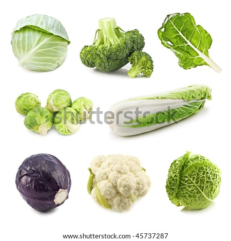 set of cabbages isolated on white - stock photo