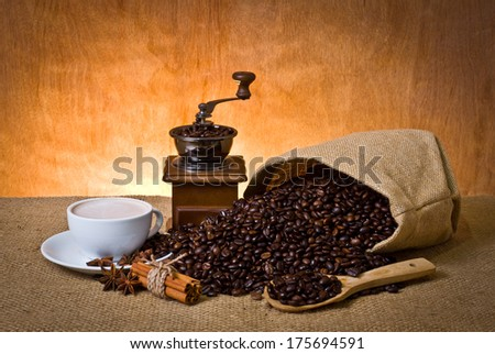 set of coffee, cup of coffee, cinnamon, star anise and coffee grinder - stock photo