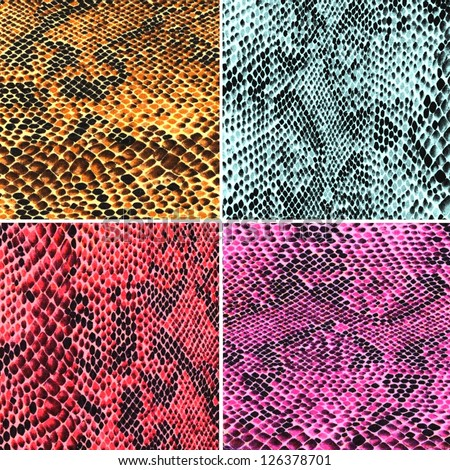 Set of colorful snake skin - stock photo
