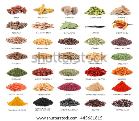 Set of different spices isolated on white background - stock photo