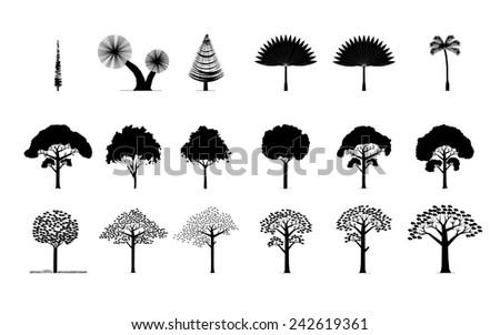 set of different trees, plam, pine..., - stock photo