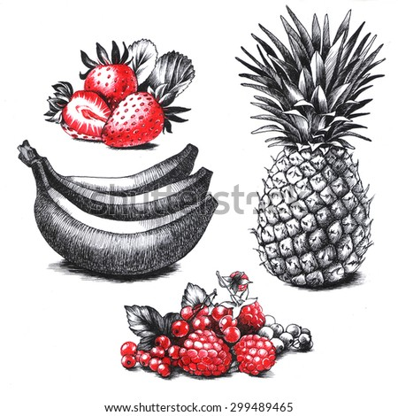 Set of drawings fruits and berries - stock photo