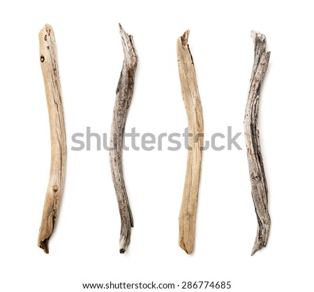 Set of dry tree branch on white background - stock photo