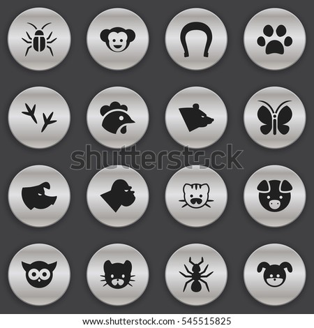Set Of 16 Editable Animal Icons. Includes Symbols Such As Grizzly, Sow, Cockroach And More. Can Be Used For Web, Mobile, UI And Infographic Design.