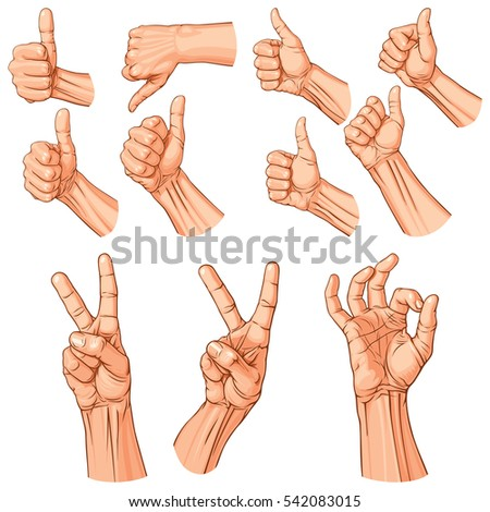 Set of eleven hands with thumb finger up, OK and victory gestures. Rasterized Version