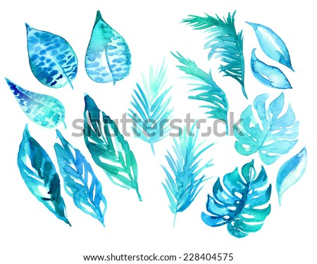 set of exotic leaves elements. abstract watercolor drawing, stains textures and silhouettes. - stock photo