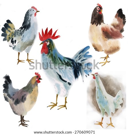 Set of farm birds. Watercolor illustration in white background. - stock photo