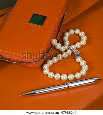Set of female accessories: a beads from pearls, the beautician, a portfolio, a ball pen.