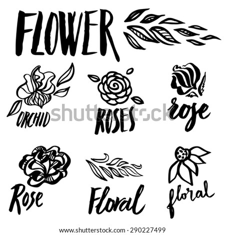 Set of  floral design elements, freehand drawing - flowers and leafs - stock photo