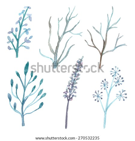 Set of flower and branch traditional drawing and painting by watercolor on white background - stock photo