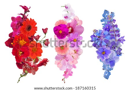 set of flower decorations isolated on white background - stock photo