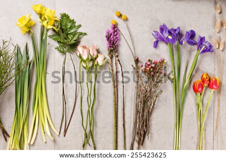 set of flowers for making bouquet with instrument - stock photo