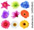 Set of flowers in different shapes, color - stock photo
