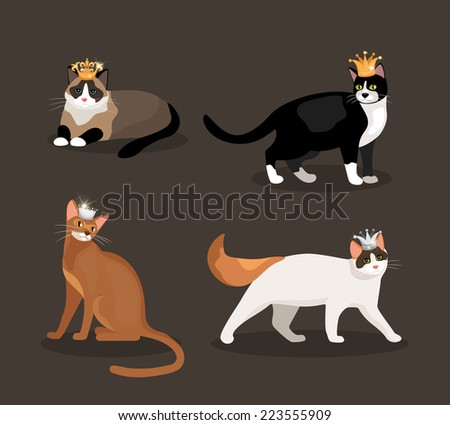 Set of four cats wearing crowns with different colored fur one standing  walking  lying and sitting illustration - stock photo