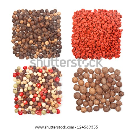 Set of four different spices square shape on white background