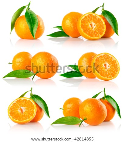 set of fresh mandarin fruits with cut and green leaves isolated on white background - stock photo