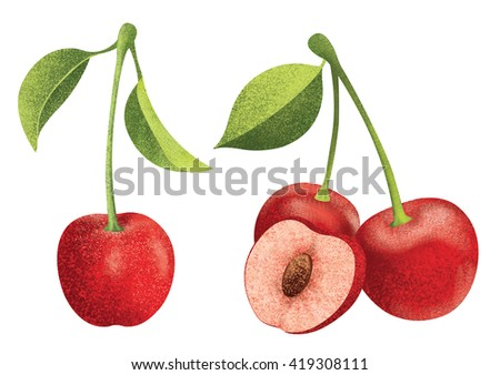 Set of fresh ripe red cherries with leaves.Different styles of cherry on white background. - stock photo