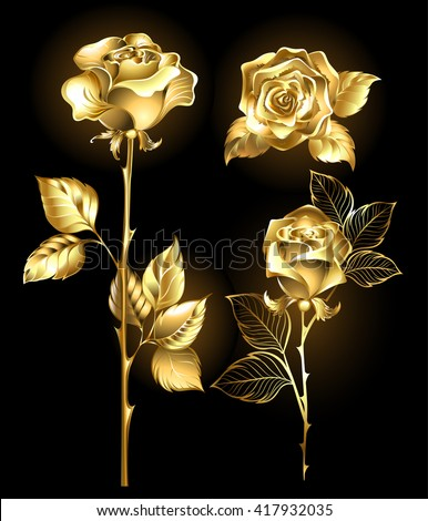 Set of gold, shining roses on a black background. Design with roses. Gold rose.  - stock photo