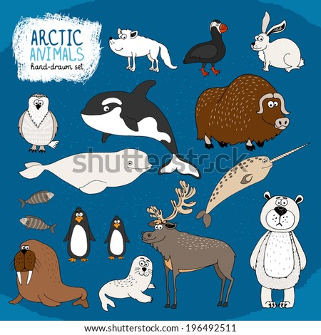 Set of hand-drawn arctic animals on a cold blue background with a polar bear  bison  reindeer  orca  beluga whale and narwhal  hare  fox  puffin  walrus  seal and penguins - stock photo