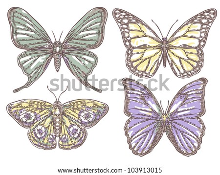 set of hand-drawn butterflies - stock photo