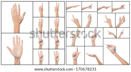 Set of hands of a female, collage concept. - stock photo