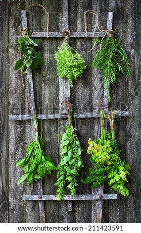 Set of herbs hanging and drying on a wooden fence